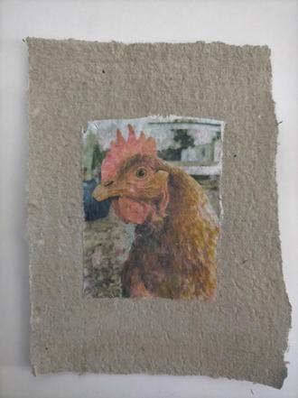 Allosaurus, phototransfer on handmade egg carton paper