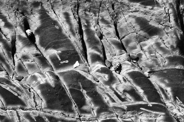 Ian Skinner, Rocks & Maculata_01, 2019, Matt fine art archival inkjet print, 33 x 48 cm