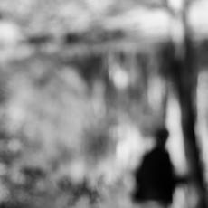 6. Distorted Reflections - Alan Charlton