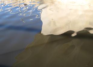 Liquid canvas, 2020, Adam Deusien