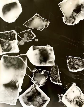 Emilio Cresciani, On Ice #8, 2020, gelatin silver photogram, 50.8cm x 40.6, $290