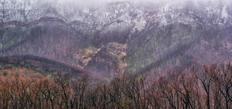 54. Fire fields & snow at Talbingo