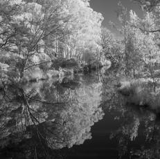 20. ANU Sullivans Creek - Caroline Lemerle