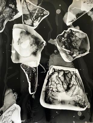 Emilio Cresciani, On Ice #16, 2020, gelatin silver photogram, 35 x 28cm, $240