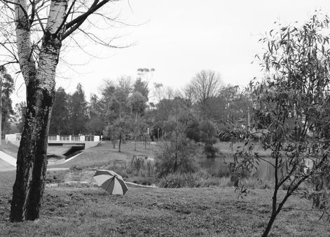 Rain Cover, 2020, Andi Gray