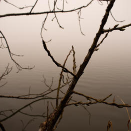 Winter's Fog at Lake Burley Griffin