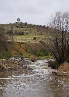 Creek Bends, 2020, Abeena Mohann