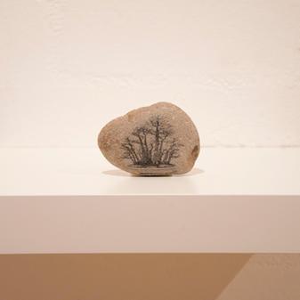 David Flanagan, Bonsai #1, 2020, Silver emulsion on stone