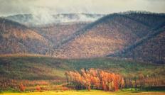 50. Autumn rebirth at Blowering dam
