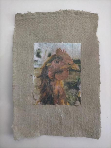 Bambiraptor, phototransfer on handmade egg carton paper