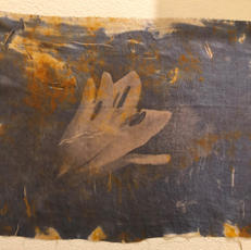 1. Sun print on silk - Virginia Walsh