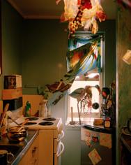 Flamingo, 2019, 20 x 25 cm, framed, Edition 2/3 + 1 AP, Archival print on cotton rag paper  Inside Richie's kitchen