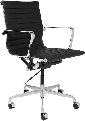 Ergo Chair 1