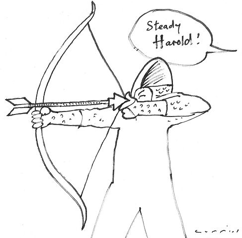 Steady Harold cartoon.jpg