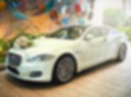 Jaguar XJL Wedding.jpg