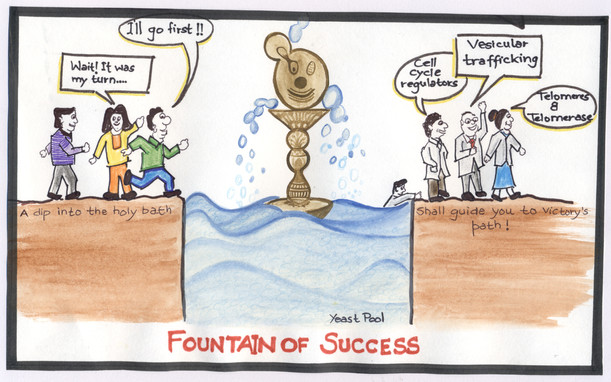 Fountain of Success by Mani garg