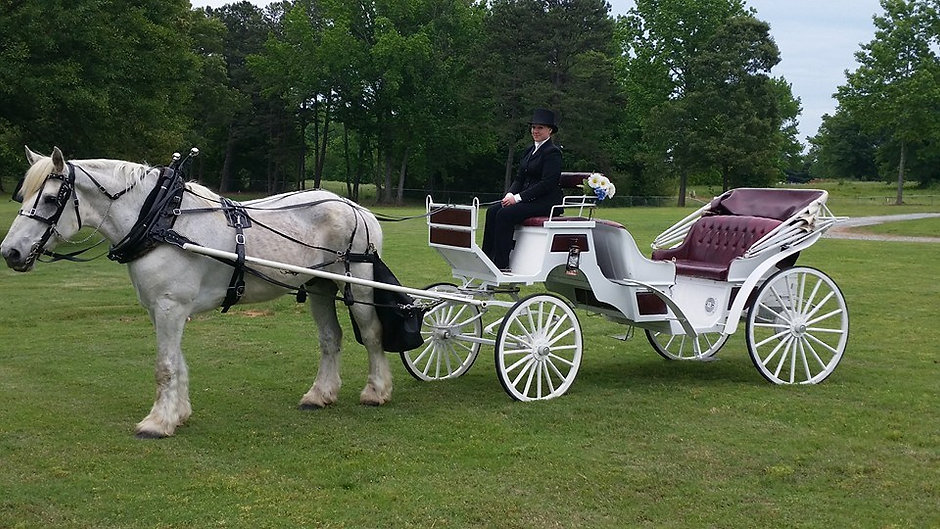 carriage wedding ride