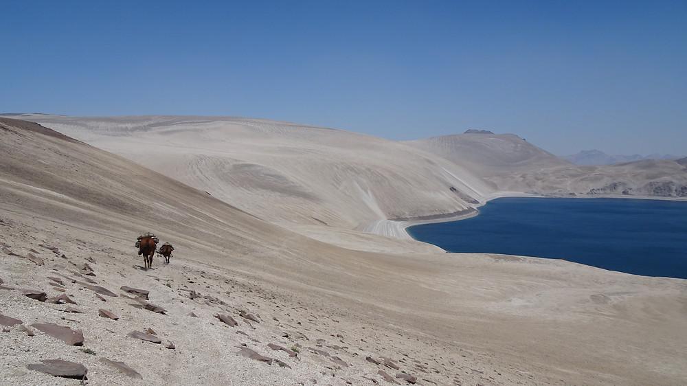 Pferd mit Reiterin steht am Abgrund. In der Ferne ist der Vulkan Lanin zu sehen.