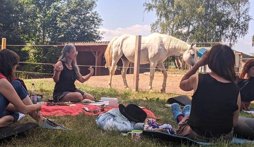 Frauen sitzen im Kreis und ein Pferd steht im HintergrundFerne ist der Vulkan Lanin zu sehen.