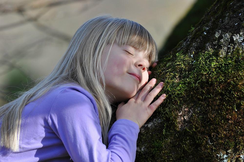 Baum umarmen, Waldbaden