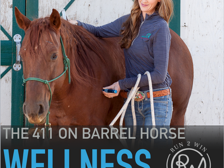 A look into whole horse a healing testimony - 411 Barrel Horse Wellness