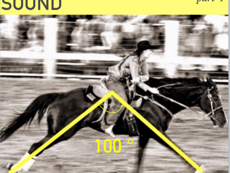 Improve your barrel horse's strength - Body sound equine