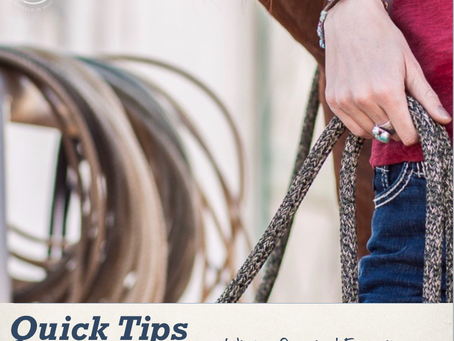 Quick tips for riders - Winter favorites for horseback riding