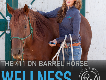 What is whole body vibration pt 3 - 411 Barrel Horse Wellness