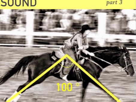 Improve your barrel horse's back - Body sound Equine
