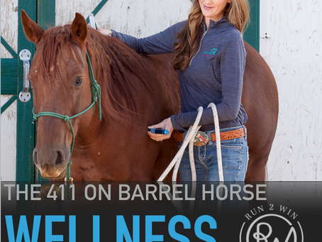 What is whole body vibration p1 - 411 Barrel Horse Wellness