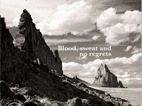 Blood, sweat and no regrets - Cowgirl Chronicles