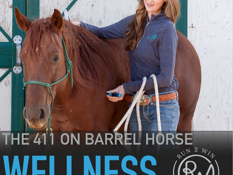 A look at red light therapy basics - 411Barrel Horse Wellness