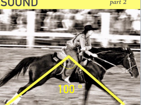 Improve your barrel horse's time - Body sound equine