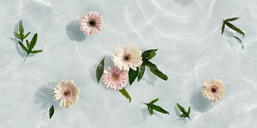 bloemen%20bad_edited.jpg