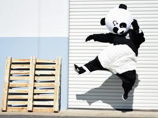 Pandas Kick Ass!