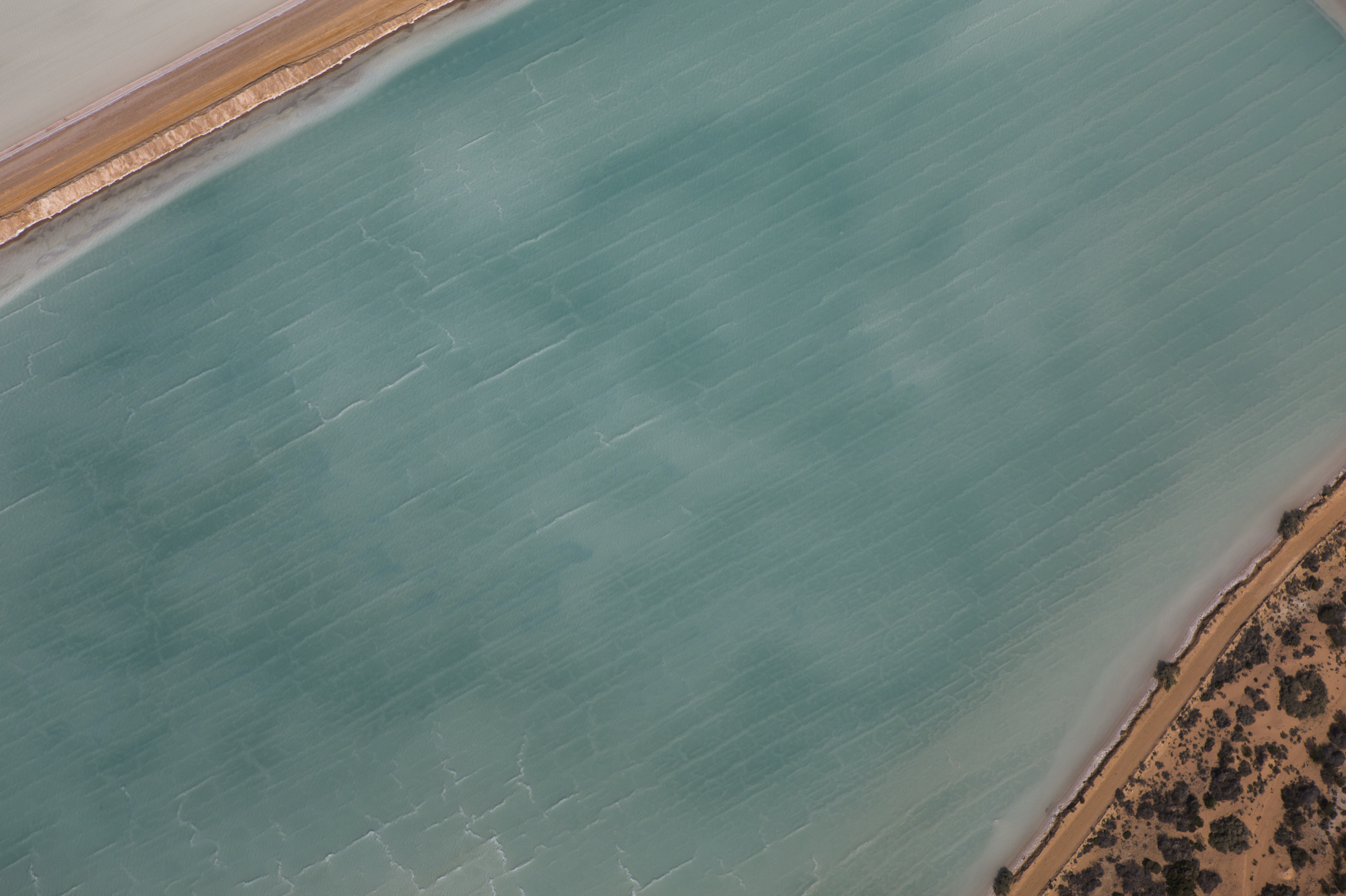 Salt Farm Evaporation Pool #7