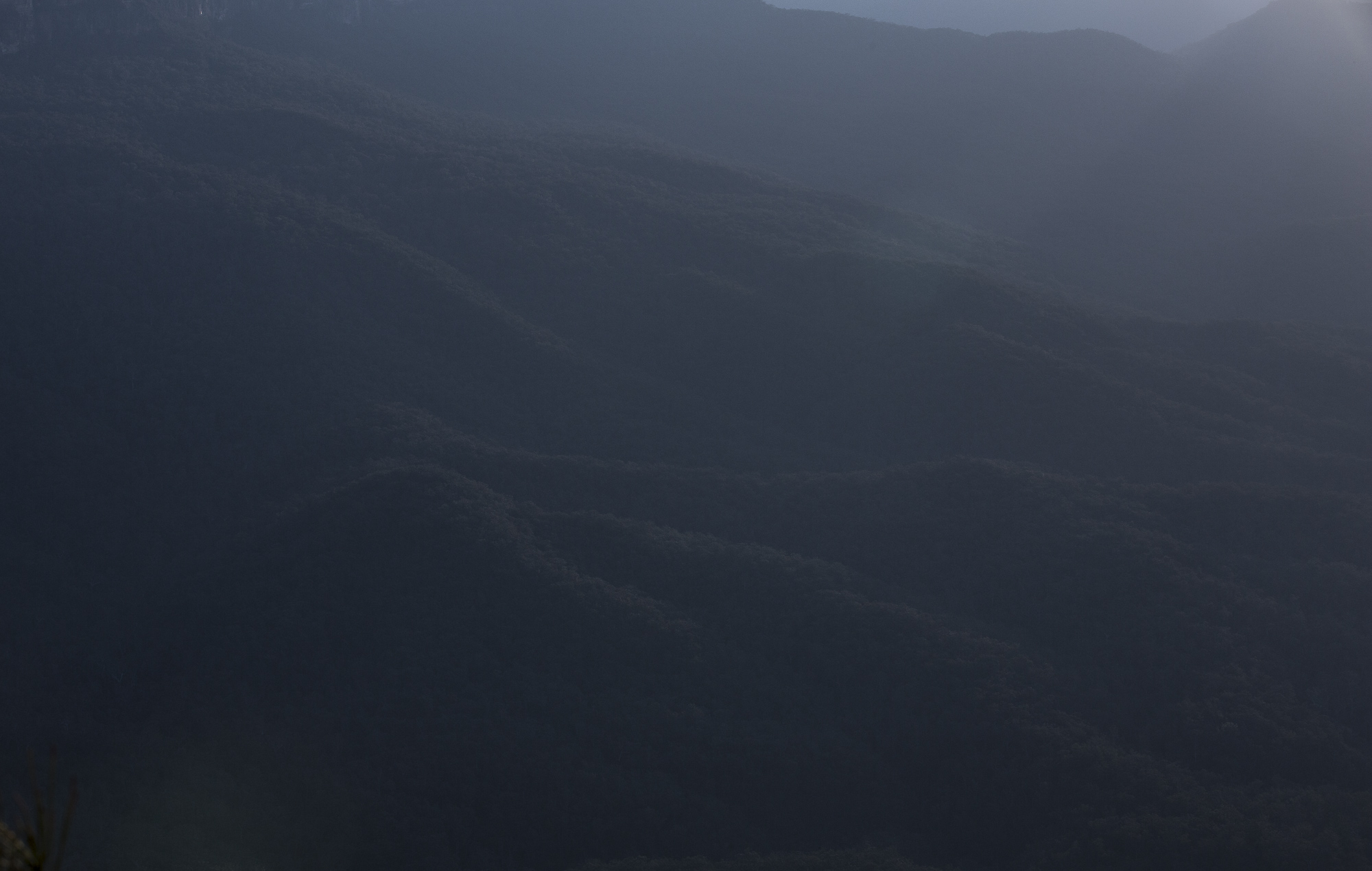Bushfire smoke in the Blue Mountains