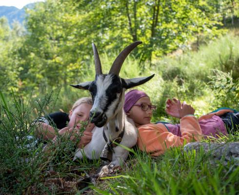 2020_Alpe_Soladino_WWF_Camp_WWF Schweiz8