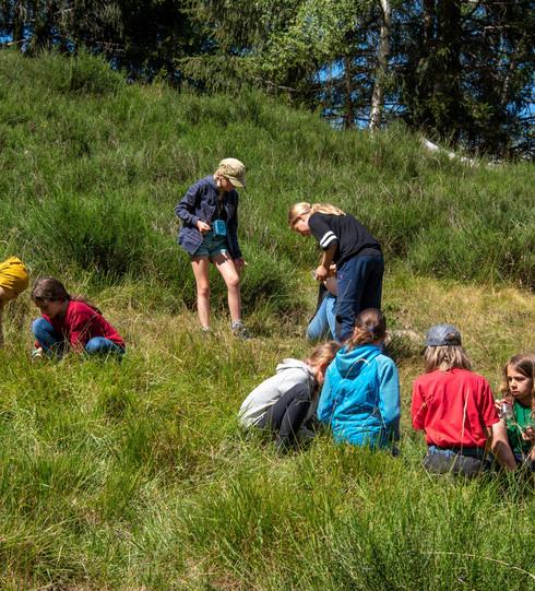 2020_Alpe_Soladino_WWF_Camp_WWF-Schweiz-