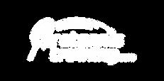 Logo_protennis-training_ weiẞ_Zeichenfla