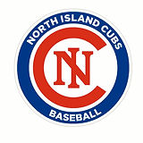 5X5 ni CUBS  decals (1280x1277).jpg