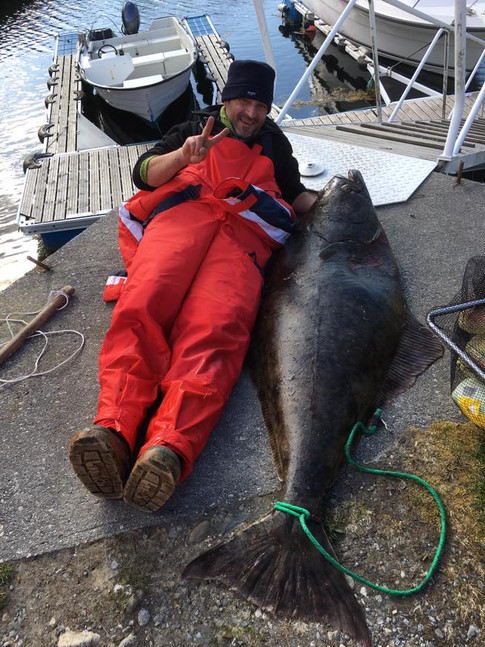 Halibut 170 cm 60 kg