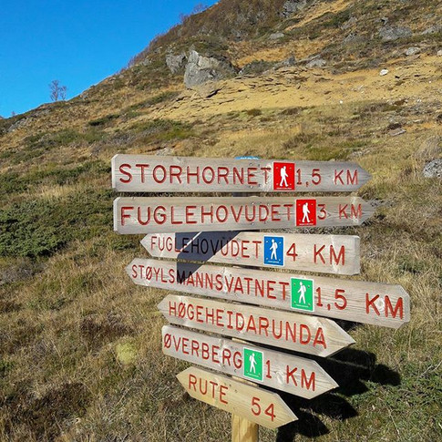 Over 80 well-marked routes nearby