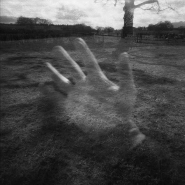 oak-hand.jpg