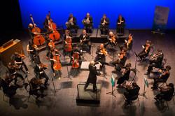 Concert Viva Mozart !