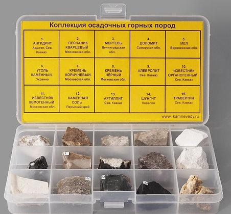 Коллекция осадочных горных пород