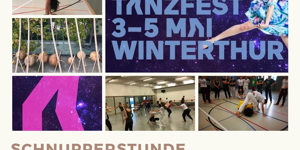 Capoeira crash course - Fête de la Danse Winterthur
