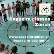 Swiss Center for Capoeira, Capoeira CDO Zürich, Workshop 2019: Roda