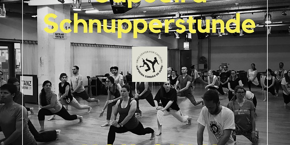 Capoeira Schnupperstunde Zürich