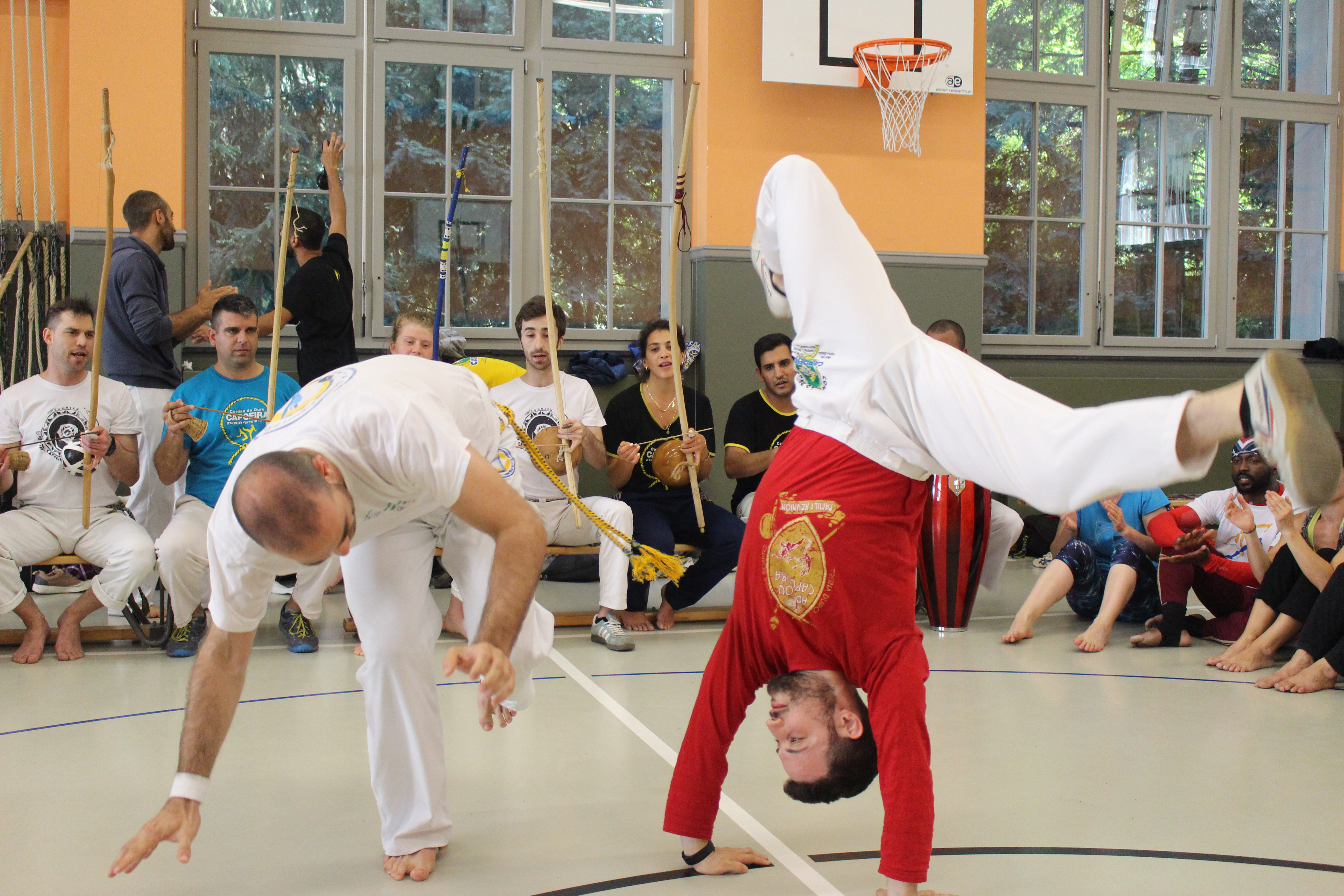 Capoeira complete beginners